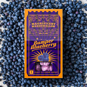 Bumper Blueberry